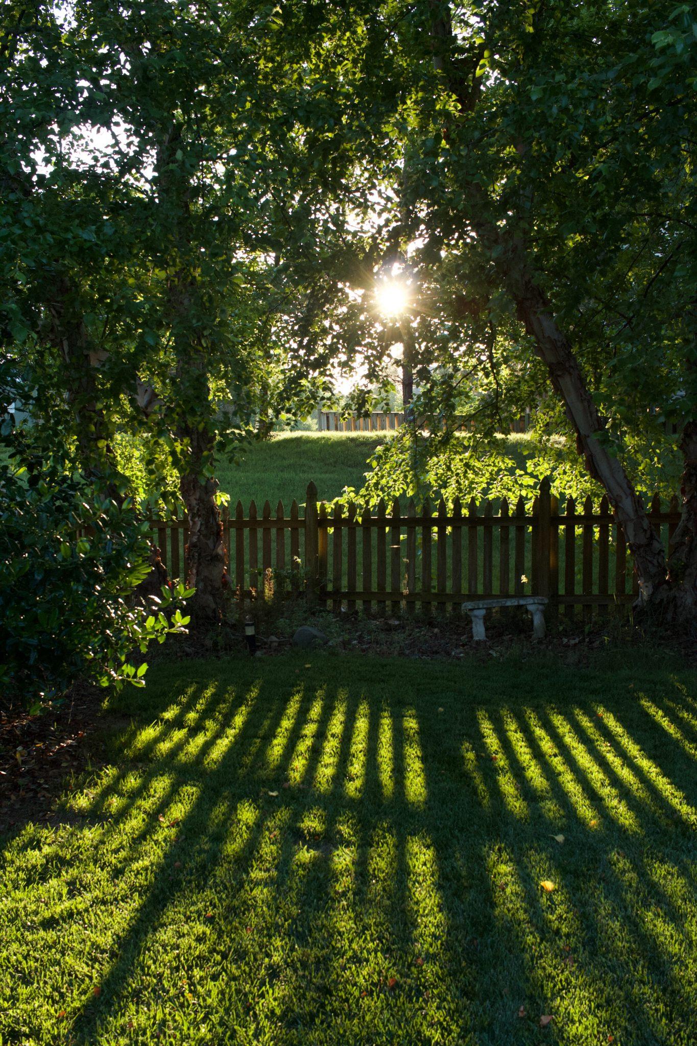 Tuin molenweg